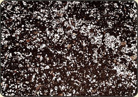 Torf kwaśny + perlit -3 litry muchołówka rosiczka