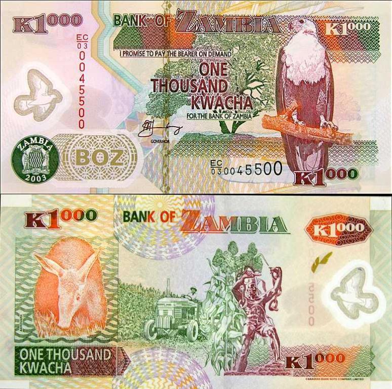 ~ Zambia 1000 Kwacha P-44a/b 2003 POLIMER Unikat