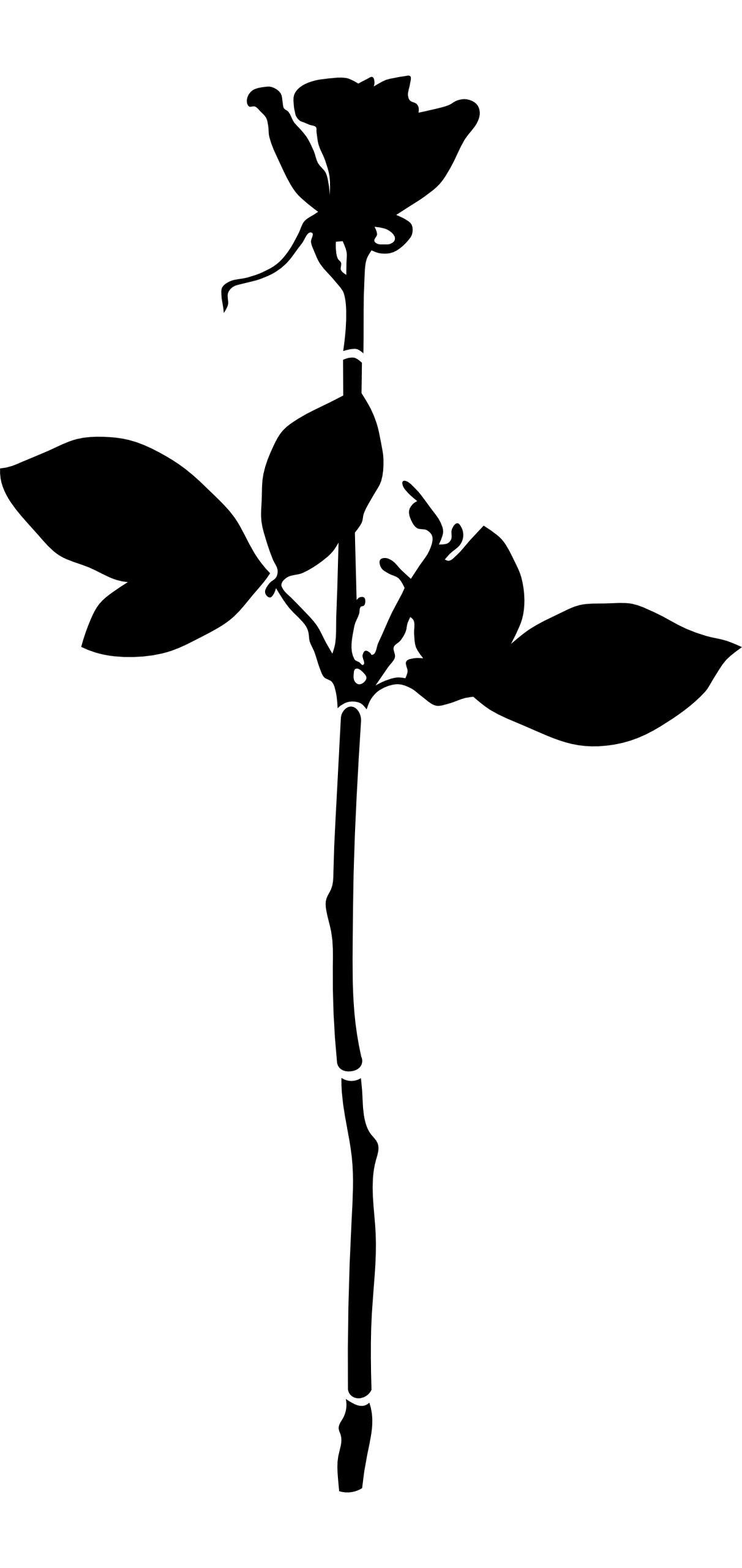naklejka na meble ścianę RÓŻA 86x45cm Depeche Mode