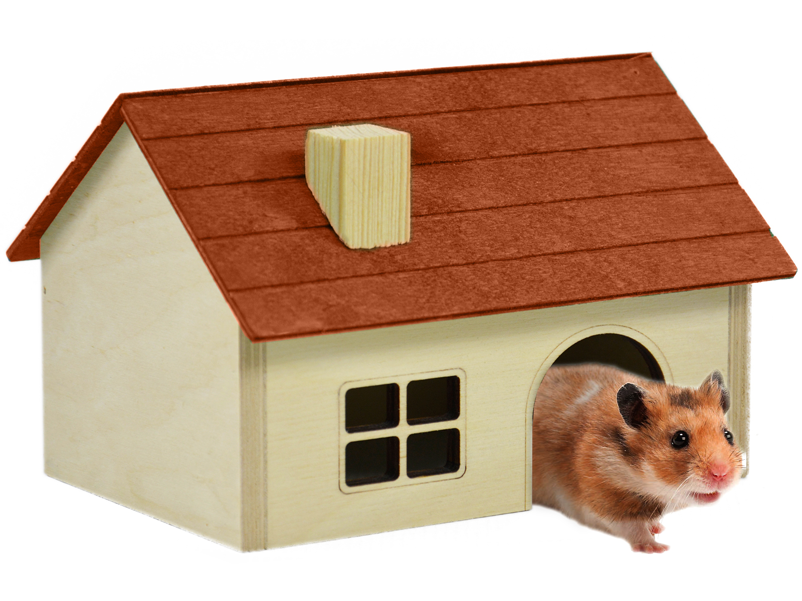 домик для грызунов картинка