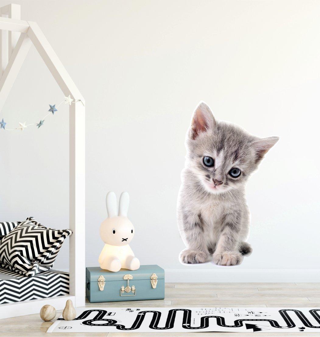 Naklejka Na ścianę Kot Kotek Koty M 7047330341 Oficjalne