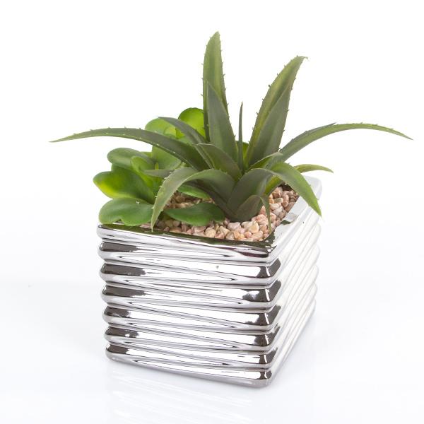 Kaktusy Mix 18 Cm Sztuczne Sukulenty W Doniczce I