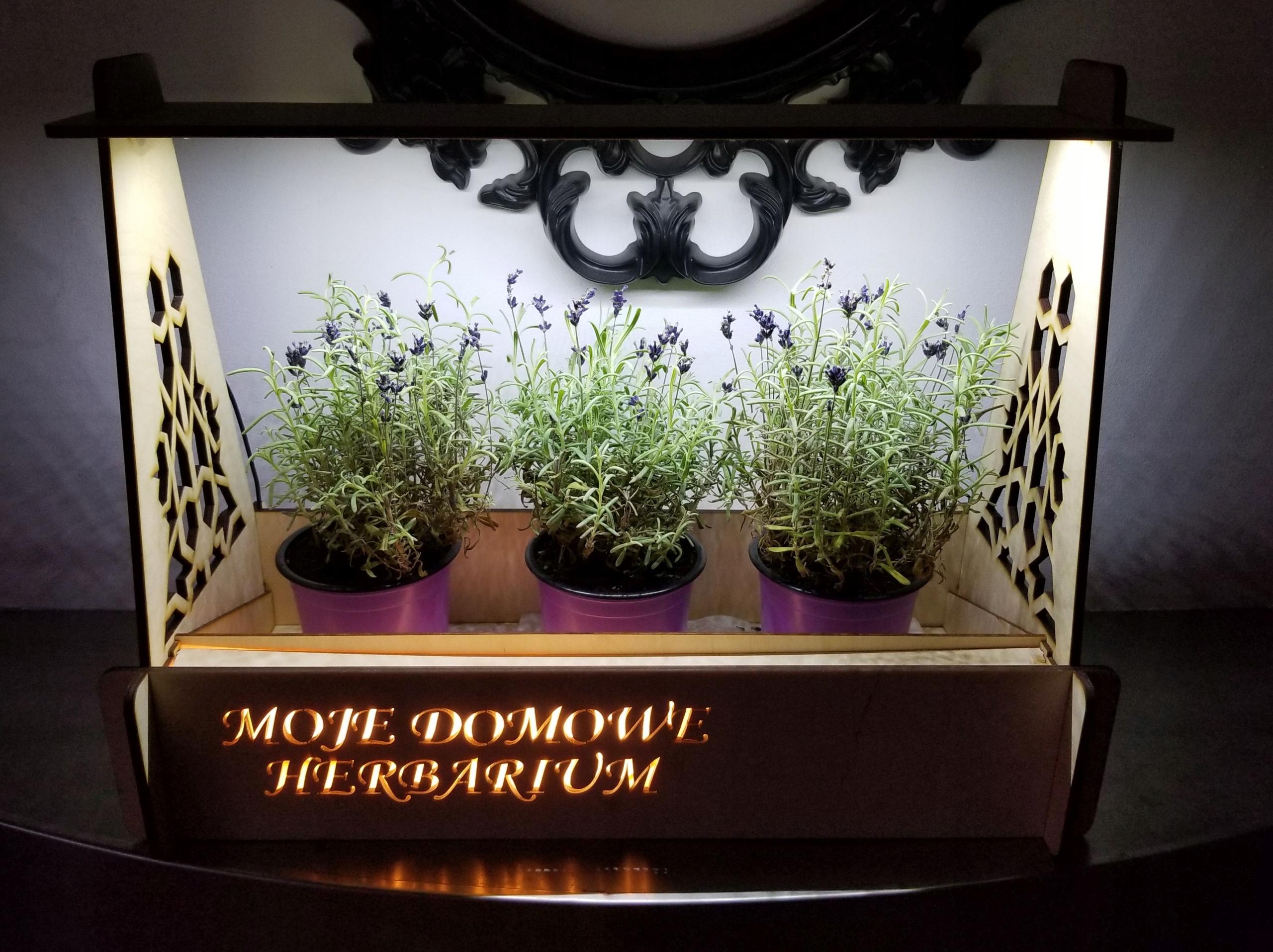 Domowy ogród, zielnik, herbarium, oświetlenie LED!