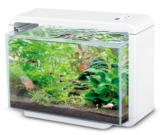 Akwarium 15l Hailea E15xw Oświetlenie Led Filtr