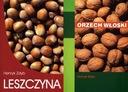 Leszczyna + Orzech włoski uprawa orzecha leszczyny