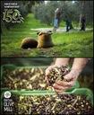 Oliwa z oliwek BIO Extra Virgin AGRELIA ORGANIC 5L Waga produktu z opakowaniem jednostkowym 5.2 kg