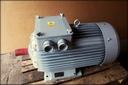 silnik elektryczny pierścieniowy SUDf 250 M4A