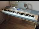 Yamaha dgx 620 630 ważona klawiatura 7 oktaw USB