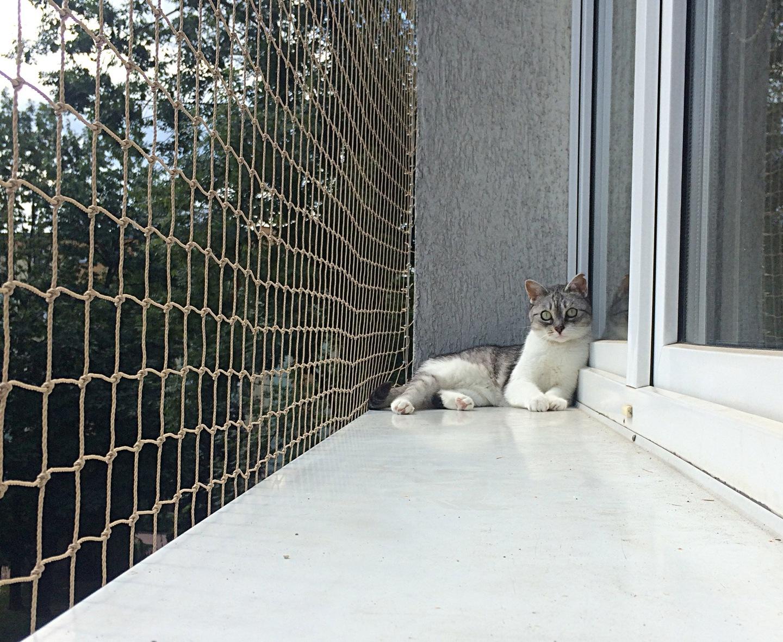 Siatka Na Balkon Gruba Siatka Dla Kota 40x40 Mm