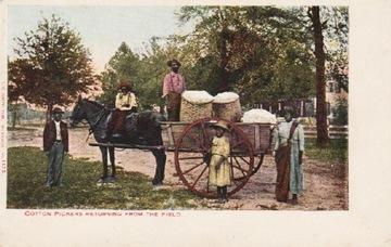 COTTON СБОРЩИКИ RETURNING FROM FIELD. ДО 1907 доставка товаров из Польши и Allegro на русском