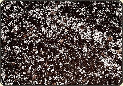 Торф кислый + перлит -3 литра мухоловка росянка