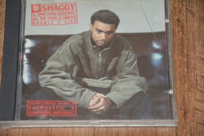 Shaggy - Something Different/THE TRAIN IS COMING