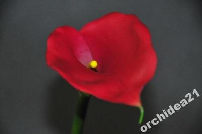 KALLA KALIA ekskluzywne kwiaty sztuczne PROMOCJA