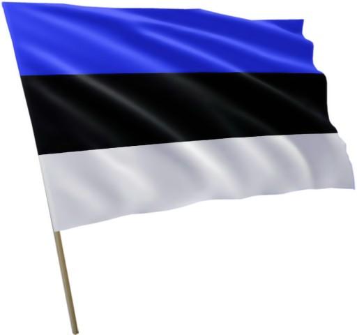 Flaga Estonii Estonia 120x75cm 7118304067 - Allegro.pl