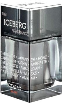 iceberg the iceberg fragrance men